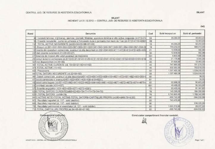 Bilant CJRAE 2012