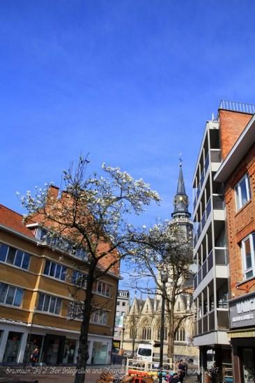 Erasmus+ FIT For Integration and Tolerance - Hasselt Belgium - march 2017 (122)