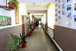 Cerc pedagogic Școala Gimnazială nr. 2, Vatra Dornei (63)