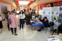 Târgul ofertelor educaționale – Suceava 2019 (140) (Copy)