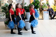 Târgul ofertelor educaționale – Suceava 2019 (237) (Copy)