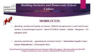 Mobilitate InterCultural Iceland nov. 2019 (8)